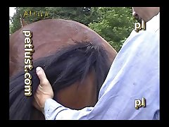 Gay Zoo Petlust Men & Stallion [divx] (part 3)