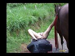 Milly Amorim Trepando Com Cavalo Engolindo Porra (part 4)