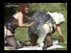 Saucy Redhead Gets Rumping From Shaggy Dog (part 6)
